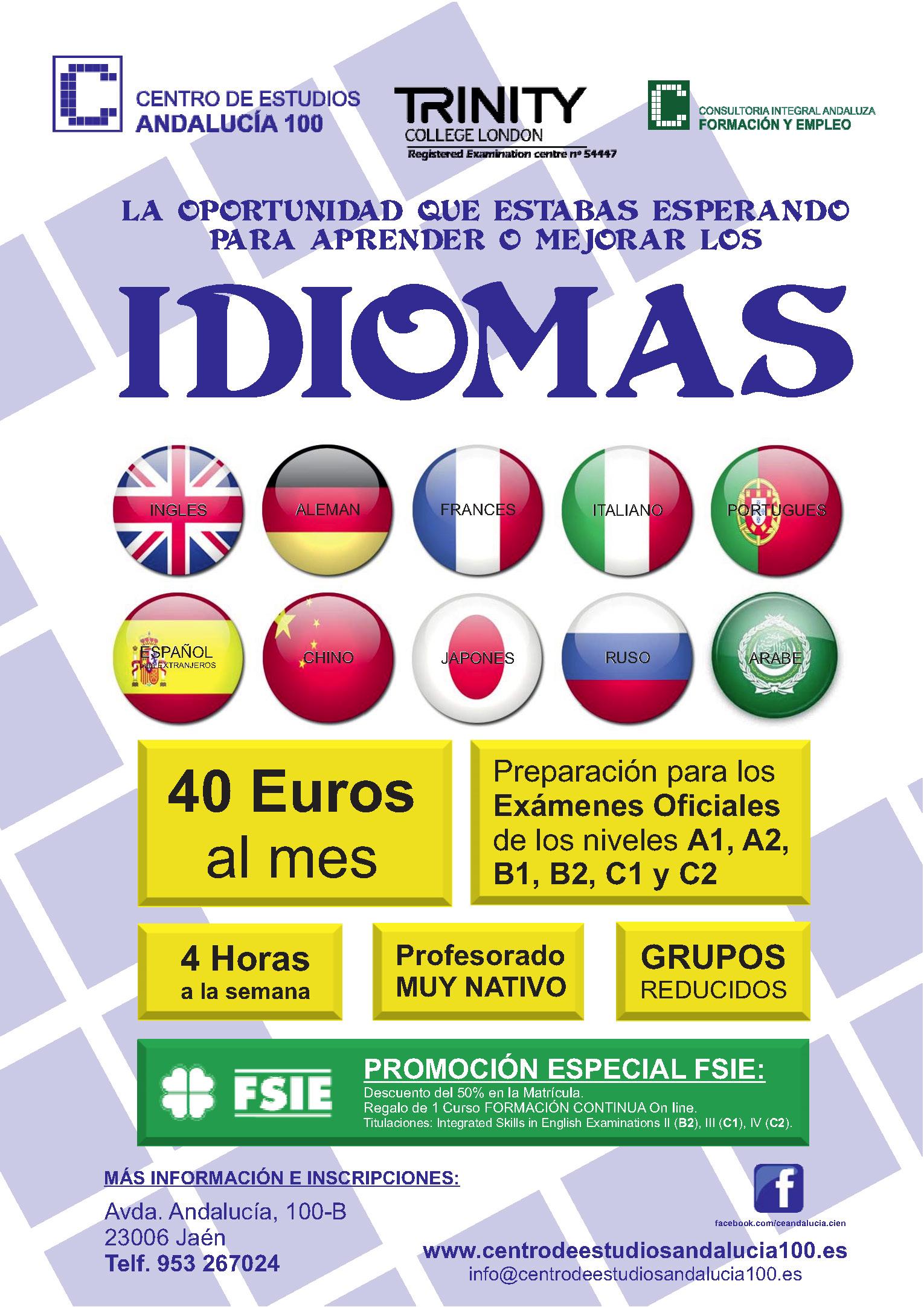 PUBLICIDAD IDIOMAS 2015 FSIE